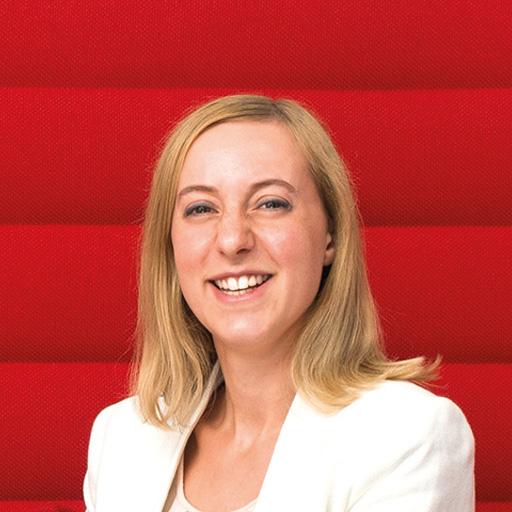 Marie Guillet-Ozdemir, Beratung CRM